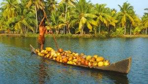 india-south-highlights-kerala